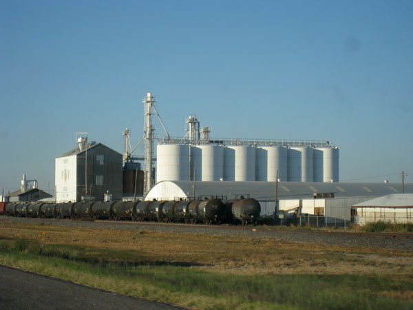 Artesia, New Mexico: If Only It Had a Cuddly, Beer-Swilling Bear