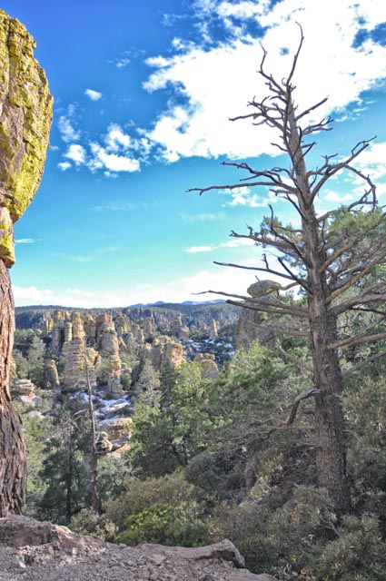 Beauty Trumps Mishap at Chiricahua