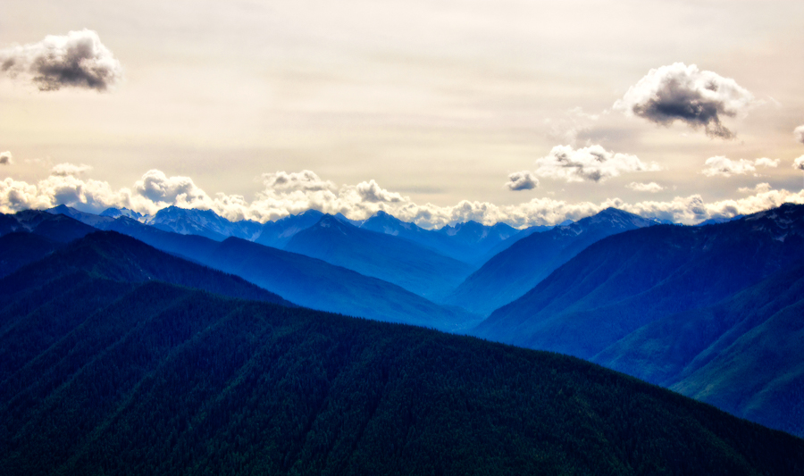 Hurricane_Ridge_blue.jpg