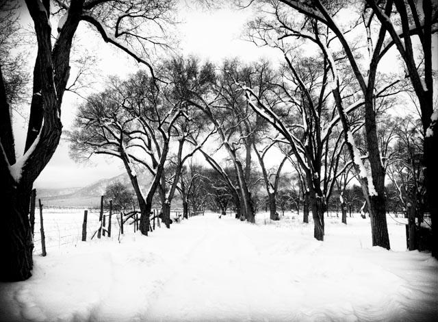 Taos-snowpocalypse-1.jpg