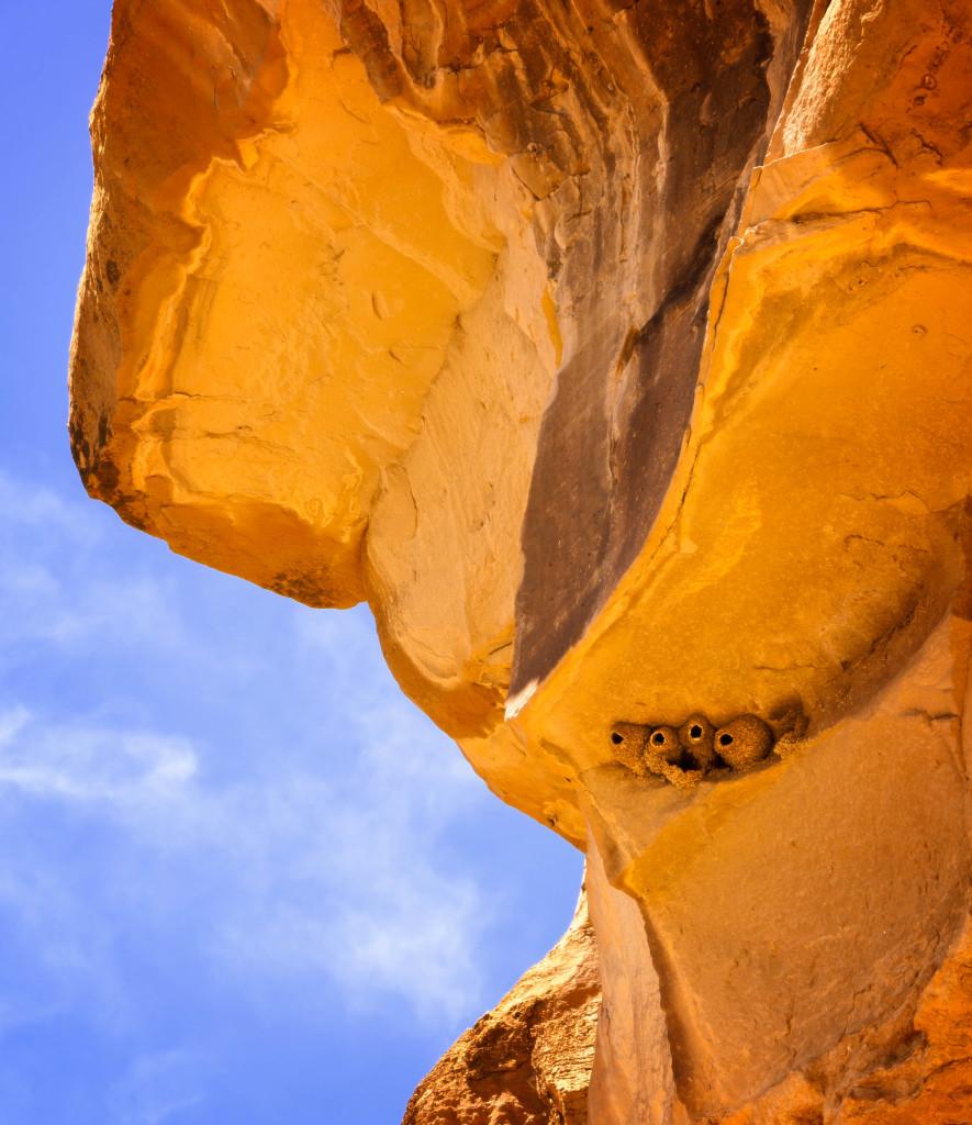 Chaco Canyon, New Mexico  Chaco Canyon, New Mexico  Chaco Canyon, New Mexico  Chaco Canyon, New Mexico  Chaco Canyon, New Mexico